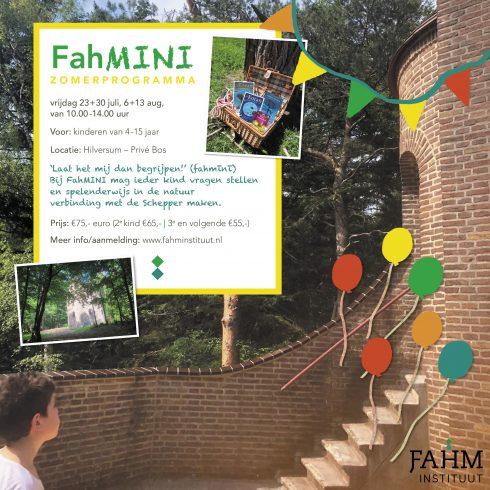FahMINI zomerprogramma Fahm Instituut